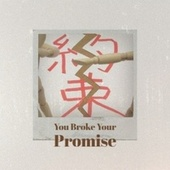 You Broke Your Promise by Various Artists
