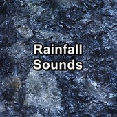 Rainfall Sounds by Thunderstorm Sound Bank