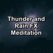 Thunder and Rain FX Meditation by Thunderstorm Sound Bank