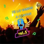 Te Lo Vamos a Cantar - Fm 94.5 Rosario, Vol. 3 de Various Artists