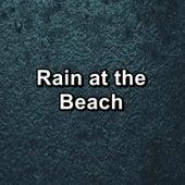 Rain at the Beach de Lightning Thunder and Rain Storm