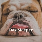 Day Sleeper by Various Artists