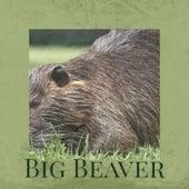 Big Beaver de Various Artists