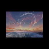 Saxoflow de Lish Grooves