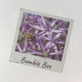Bumble Bee de Various Artists