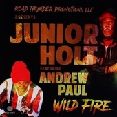 Wild Fire (feat. Andrew Paul) by Junior Holt