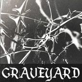 Graveyard von Lofi Fruits Music
