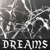 Dreams von Lofi Fruits Music