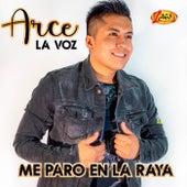 Me Paro En La Raya by Arce La voz