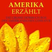 Amerika erzählt (Die große Hörbuch Box der amerikanischen Literatur) von Mark Twain