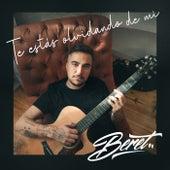 Te estás olvidando de mí by Beret