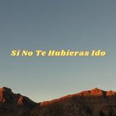 Si No Te Hubieras Ido (Cover) de Iván Rosa