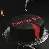 Birthday Boy de Sébastien Tellier
