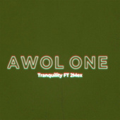 Tranquility by AWOL One