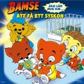 Bamse - Jag lär mig om att få ett syskon de Bamse