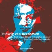 Ludwig Van Beethoven - Vom Jungen Wilden Zum Großen Visionär by Christiane Behn