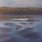 Cry Stampede by Various Artists