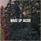 Wake Up Jacob de Various Artists