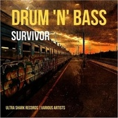 Drum and Bass Survivor, Vol. 1 by Various Artists