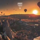 Deep Vibes, Vol. 2 von Various Artists