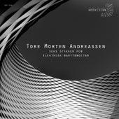 Seks stykker for elektrisk barytongitar by Tore Morten Andreassen