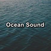 Ocean Sound de Beach Sounds