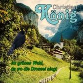 Im grünen Wald, da wo die Drossel singt von Christian König