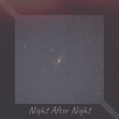Night After Night von Various Artists