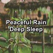 Peaceful Rain Deep Sleep by Binaural Beats Sleep