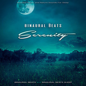 Binaural Beats Serenity: Ambient Music and Nature Sounds For Sleep by Binaural Beats