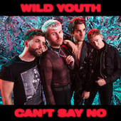 Can't Say No by Wild Youth