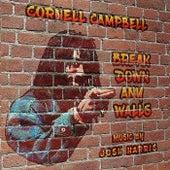 Break Down Any Walls by Josh Harris