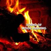 Sound Of Burning Wood & Piano de Ahanu