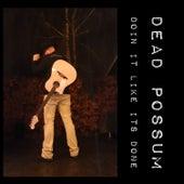 Doin' It Like It's Done by Dead possum