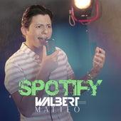 Spotify de Waberth Estevan Ferreira