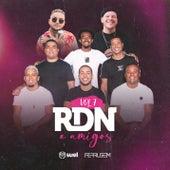 RDN & Amigos, Vol. 7 de Rdn