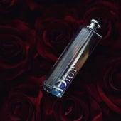 Dior by Cara