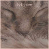 Indication by Various Artists