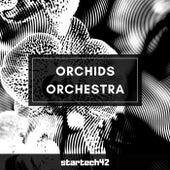 Orchids Orchestra von Startech42