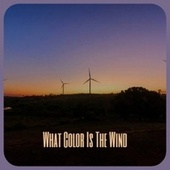 What Color Is The Wind by Various Artists