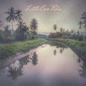 Little Coco Palm de Various Artists