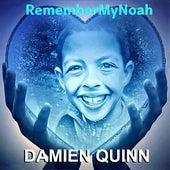 Remember My Noah by Damien Quinn