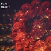How Deep Is Your Love ? von Fuju