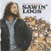 Sawin' Logs de Dillon Carmichael