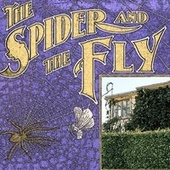 The Spider and the Fly by Peggy Lee