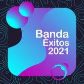 Banda Exitos 2021 de Various Artists