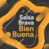 Salsa Brava Bien Buena de Various Artists