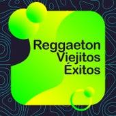 Reggaeton Viejitos Exitos by Various Artists