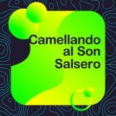 Camellando al Son Salsero de Various Artists