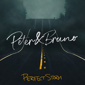 Perfect Storm by Peter